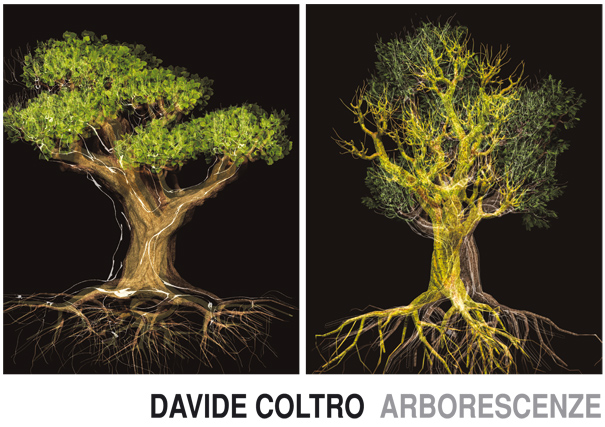 DAVIDE_COLTRO_ARBORESCENZE